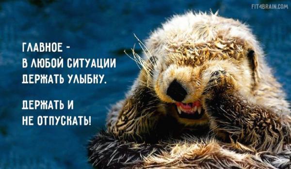 http://www.anekdotov-mnogo.ru/image-prikol//smeshnie_kartinki_142813664253.jpg