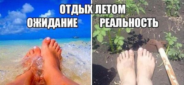 http://www.anekdotov-mnogo.ru/image-prikol//smeshnie_kartinki_146904611640.jpg