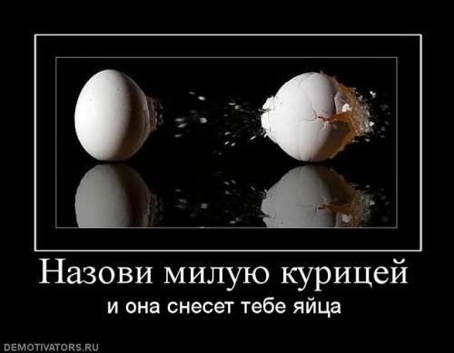 http://www.anekdotov-mnogo.ru/image-prikol/smeshnie_kartinki_1304804737.jpg