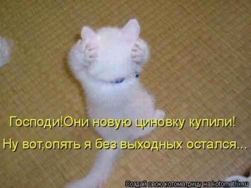 http://www.anekdotov-mnogo.ru/image-prikol/smeshnie_kartinki_1320509846.jpg