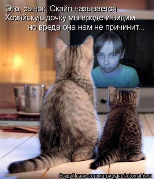 http://www.anekdotov-mnogo.ru/image-prikol/smeshnie_kartinki_1320510082.jpg