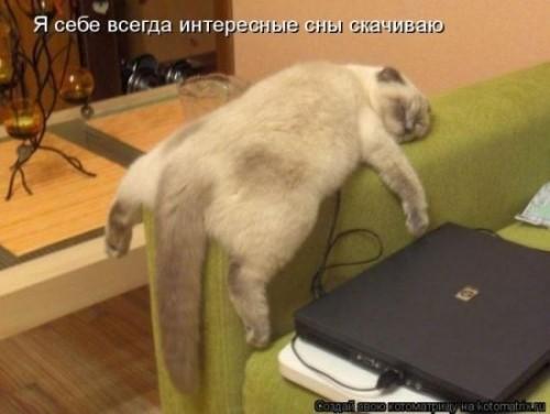 http://www.anekdotov-mnogo.ru/image-prikol/smeshnie_kartinki_1320510294.jpg