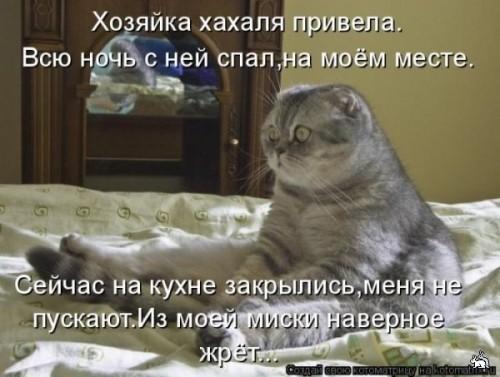 http://www.anekdotov-mnogo.ru/image-prikol/smeshnie_kartinki_1321033736.jpg