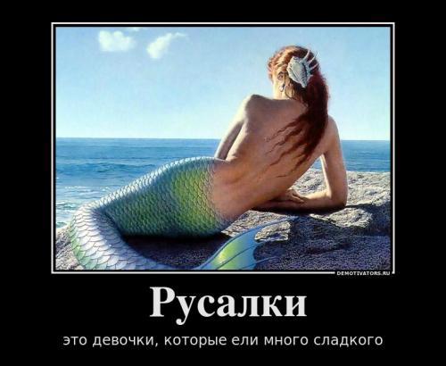 http://www.anekdotov-mnogo.ru/image-prikol/smeshnie_kartinki_133007954124022012.jpg