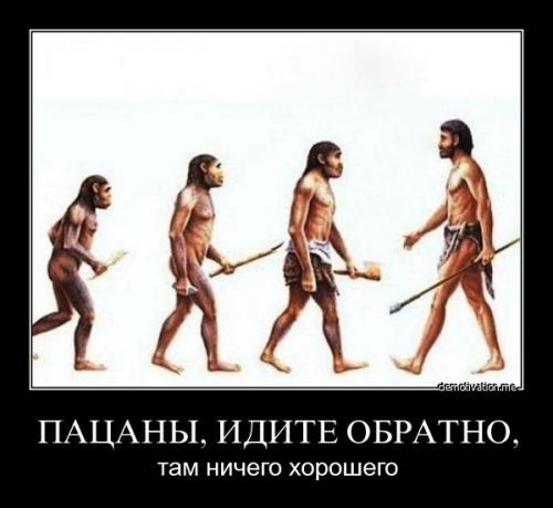 http://www.anekdotov-mnogo.ru/image-prikol/smeshnie_kartinki_133034782527022012.jpg