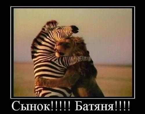 http://www.anekdotov-mnogo.ru/image-prikol/smeshnie_kartinki_133036770527022012.jpg