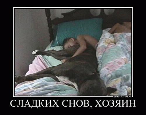 http://www.anekdotov-mnogo.ru/image-prikol/smeshnie_kartinki_133087206504032012.jpg
