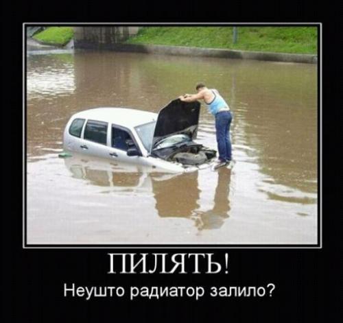 http://www.anekdotov-mnogo.ru/image-prikol/smeshnie_kartinki_133087250604032012.jpg