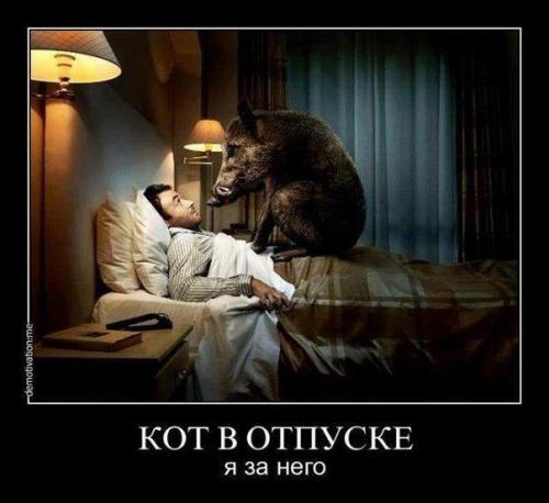 http://www.anekdotov-mnogo.ru/image-prikol/smeshnie_kartinki_133094171405032012.jpg