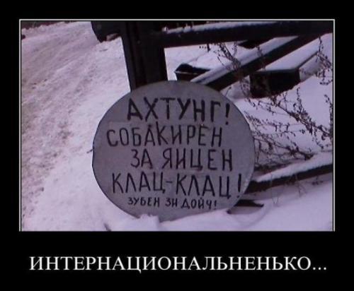 http://www.anekdotov-mnogo.ru/image-prikol/smeshnie_kartinki_133268025025032012.jpg