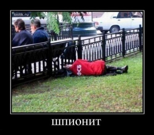 http://www.anekdotov-mnogo.ru/image-prikol/smeshnie_kartinki_133360759605042012.jpg