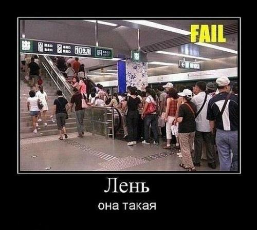 http://www.anekdotov-mnogo.ru/image-prikol/smeshnie_kartinki_133468944917042012.jpg
