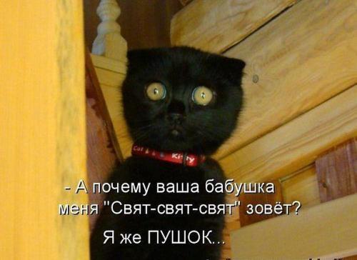 http://www.anekdotov-mnogo.ru/image-prikol/smeshnie_kartinki_133684378912052012.jpg