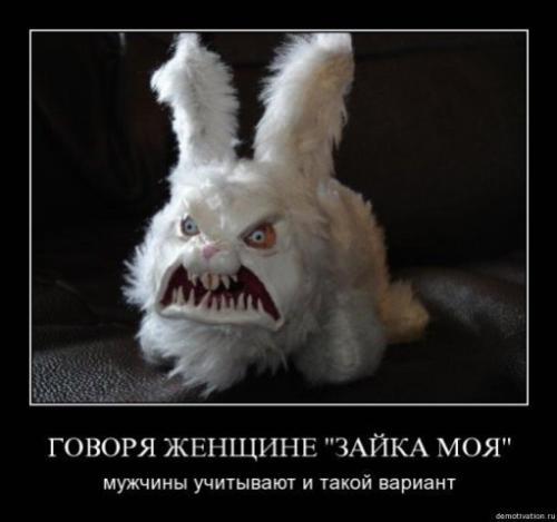 http://www.anekdotov-mnogo.ru/image-prikol/smeshnie_kartinki_133705446215052012.jpg