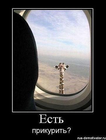 http://www.anekdotov-mnogo.ru/image-prikol/smeshnie_kartinki_133823180928052012.jpg