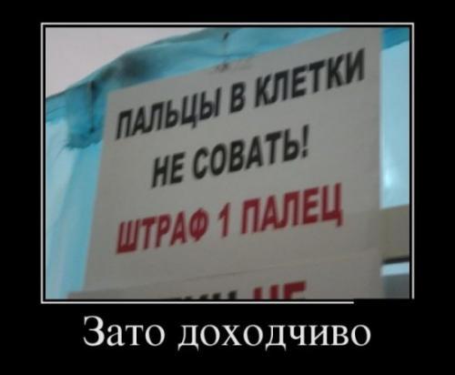 http://www.anekdotov-mnogo.ru/image-prikol/smeshnie_kartinki_133828253329052012.jpg