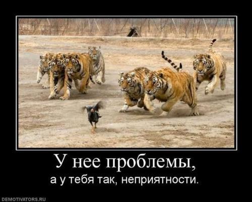 http://www.anekdotov-mnogo.ru/image-prikol/smeshnie_kartinki_133830598029052012.jpg