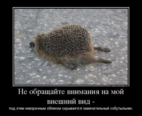 http://www.anekdotov-mnogo.ru/image-prikol/smeshnie_kartinki_133847119331052012.jpg