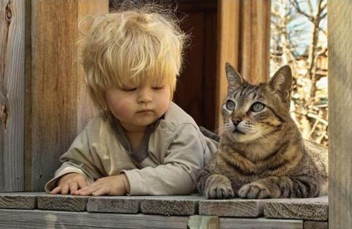 http://www.anekdotov-mnogo.ru/image-prikol/smeshnie_kartinki_133925054409062012.jpg