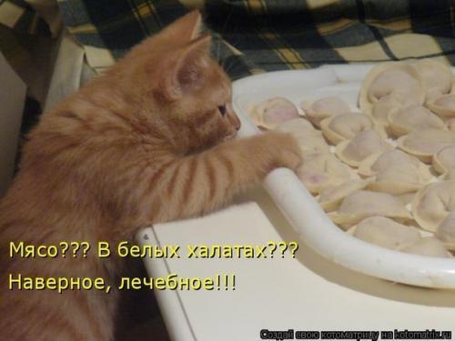 http://www.anekdotov-mnogo.ru/image-prikol/smeshnie_kartinki_133939130811062012.jpg
