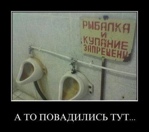http://www.anekdotov-mnogo.ru/image-prikol/smeshnie_kartinki_134003573518062012.jpg