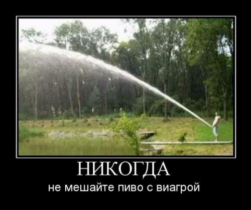 http://www.anekdotov-mnogo.ru/image-prikol/smeshnie_kartinki_134003790418062012.jpg