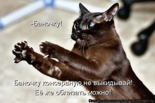 http://www.anekdotov-mnogo.ru/image-prikol/smeshnie_kartinki_134045489123062012.jpg