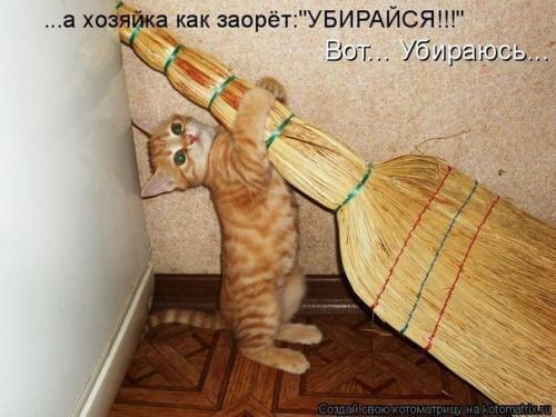 http://www.anekdotov-mnogo.ru/image-prikol/smeshnie_kartinki_134045490323062012.jpg
