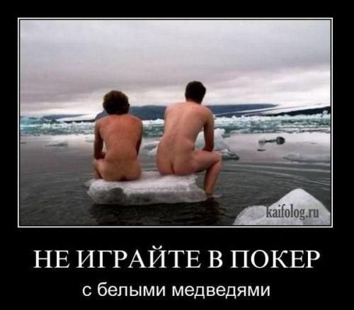 http://www.anekdotov-mnogo.ru/image-prikol/smeshnie_kartinki_134046752923062012.jpg
