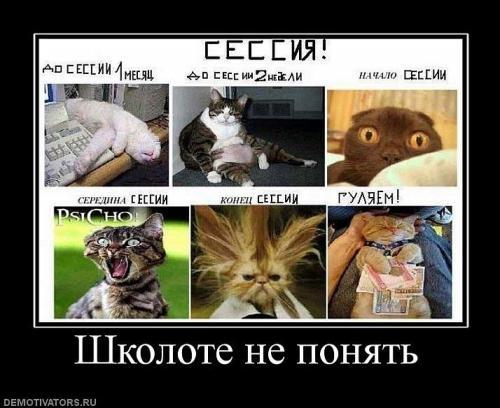http://www.anekdotov-mnogo.ru/image-prikol/smeshnie_kartinki_134070580326062012.jpg