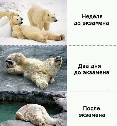 http://www.anekdotov-mnogo.ru/image-prikol/smeshnie_kartinki_134088124428062012.jpg