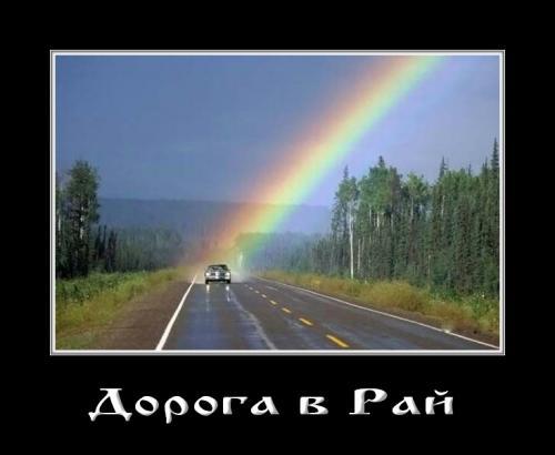 http://www.anekdotov-mnogo.ru/image-prikol/smeshnie_kartinki_134113598501072012.jpg