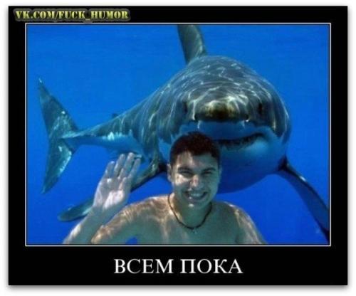 http://www.anekdotov-mnogo.ru/image-prikol/smeshnie_kartinki_134201735211072012.jpg