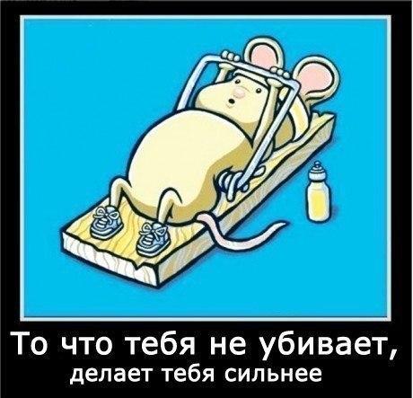 http://www.anekdotov-mnogo.ru/image-prikol/smeshnie_kartinki_134201751511072012.jpg
