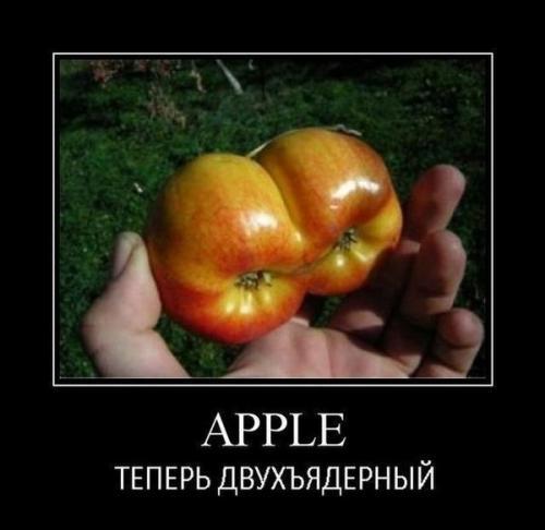 http://www.anekdotov-mnogo.ru/image-prikol/smeshnie_kartinki_134201785811072012.jpg