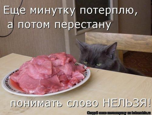 http://www.anekdotov-mnogo.ru/image-prikol/smeshnie_kartinki_134212881413072012.jpg
