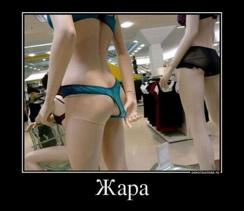 http://www.anekdotov-mnogo.ru/image-prikol/smeshnie_kartinki_134262334018072012.jpg