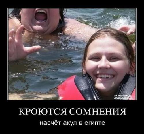 http://www.anekdotov-mnogo.ru/image-prikol/smeshnie_kartinki_134263290518072012.jpg