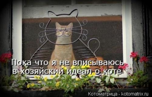 http://www.anekdotov-mnogo.ru/image-prikol/smeshnie_kartinki_134290201922072012.jpg