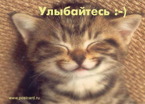http://www.anekdotov-mnogo.ru/image-prikol/smeshnie_kartinki_134426592606082012.jpg