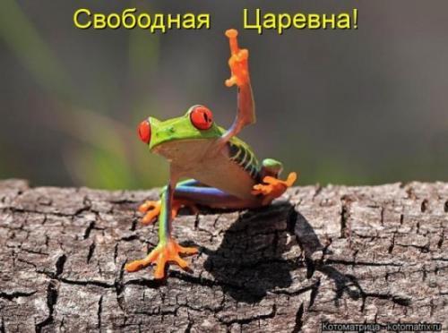 http://www.anekdotov-mnogo.ru/image-prikol/smeshnie_kartinki_134435750507082012.jpg