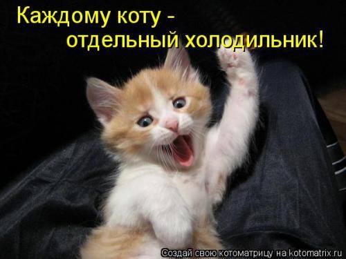 http://www.anekdotov-mnogo.ru/image-prikol/smeshnie_kartinki_134453937109082012.jpg