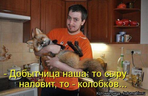 http://www.anekdotov-mnogo.ru/image-prikol/smeshnie_kartinki_134453944909082012.jpg