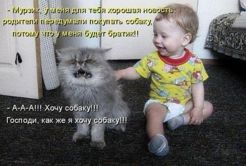 http://www.anekdotov-mnogo.ru/image-prikol/smeshnie_kartinki_134502659515082012.jpg
