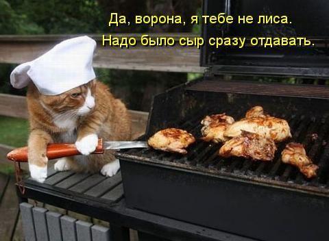http://www.anekdotov-mnogo.ru/image-prikol/smeshnie_kartinki_134503287915082012.jpg