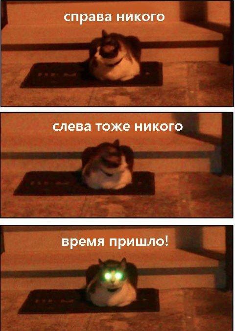 http://www.anekdotov-mnogo.ru/image-prikol/smeshnie_kartinki_134574464923082012.jpg