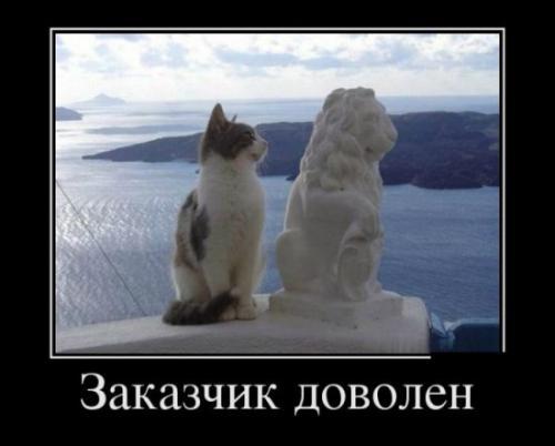 http://www.anekdotov-mnogo.ru/image-prikol/smeshnie_kartinki_134650347601092012.jpg