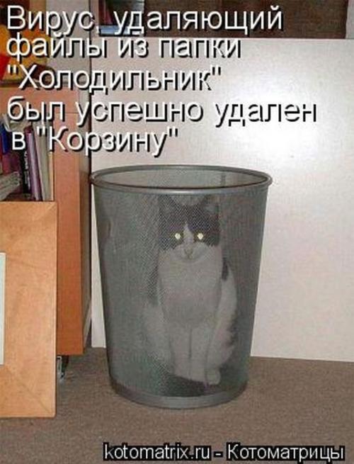 http://www.anekdotov-mnogo.ru/image-prikol/smeshnie_kartinki_134659518102092012.jpg