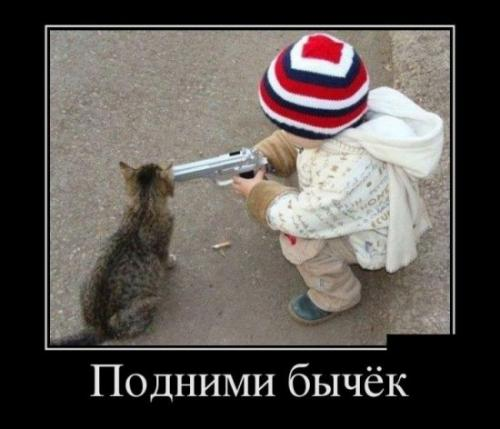 http://www.anekdotov-mnogo.ru/image-prikol/smeshnie_kartinki_134798805918092012969.jpg