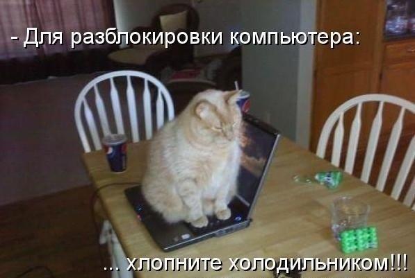 http://www.anekdotov-mnogo.ru/image-prikol/smeshnie_kartinki_1348962113300920121012.jpg